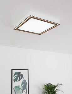 LED 헤이즈 리모컨 방등 50/60W