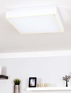 LED 라이언 방등 80W
