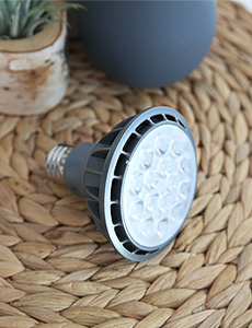 LED PAR30 램프 15W(주백색)
