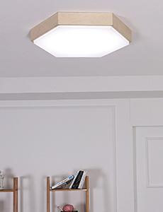 LED 트리버 방등 50W