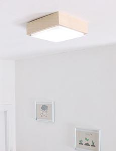LED 오가닉 직부등