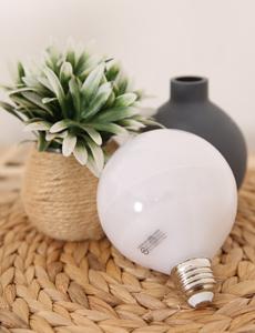 LED 프로 볼램프 12W (주백색)