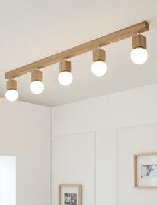 LED 레이미 5등 직부등