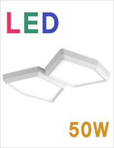 LED 네트 2등 직부등 50W[2종 선택]
