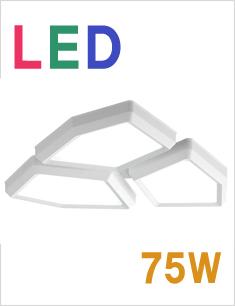 LED 네트 3등 직부등 75W[2종 선택]
