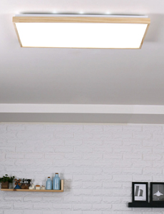 LED 파테르 직사각 방등 50W