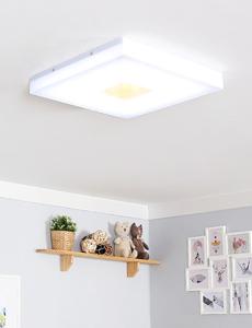 LED 아카스 방등 55W